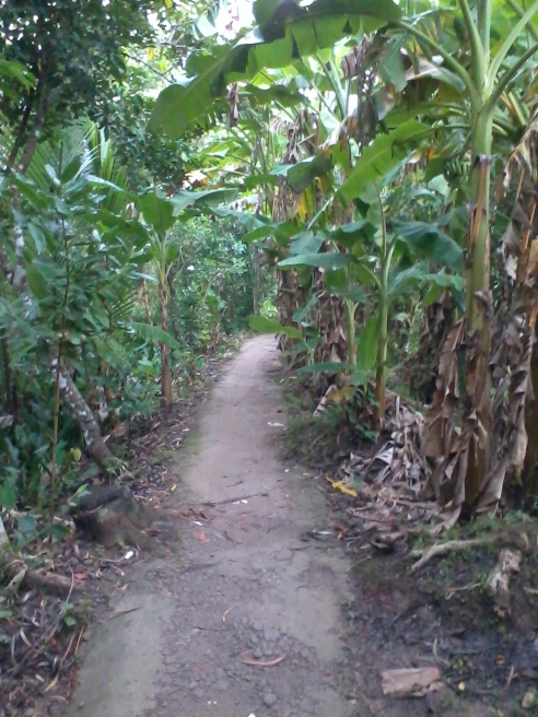 path to Green Village