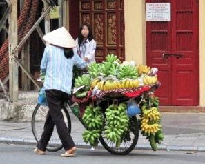 Bananas on the move...